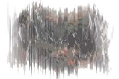 Untitled-11