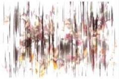 TN_TN_Copy of Untitled-1